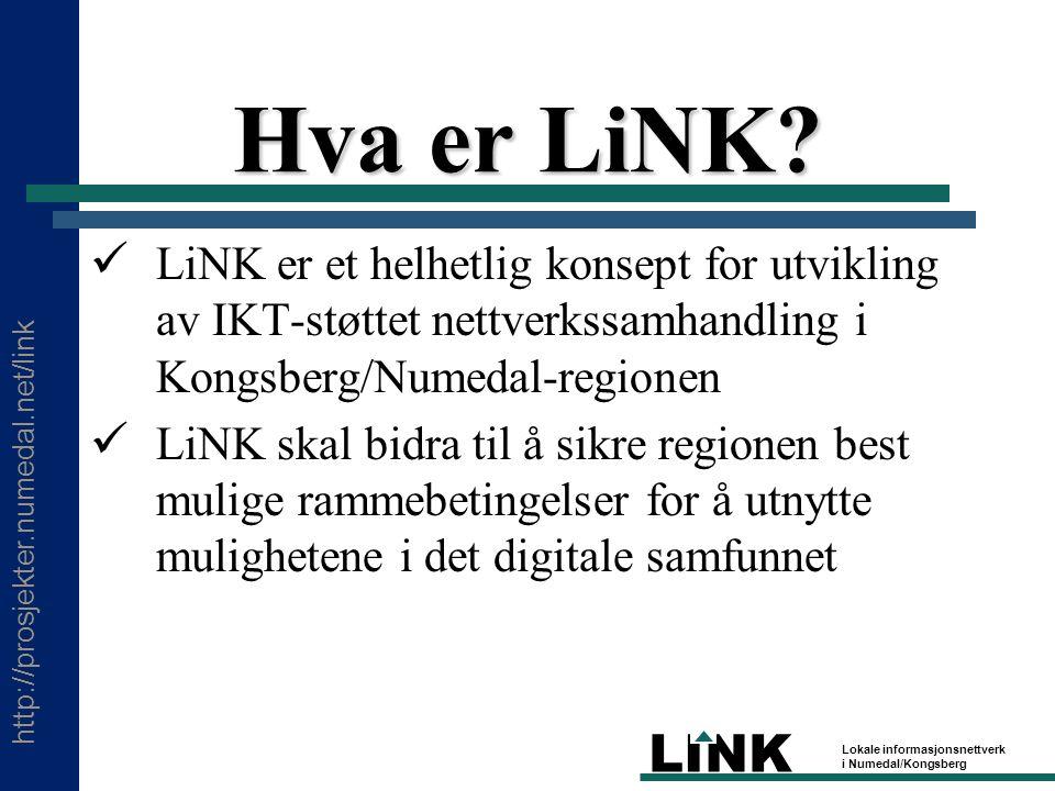 http://prosjekter.numedal.net/link LINK Lokale informasjonsnettverk i Numedal/Kongsberg Oppsummering Spørsmål 2 – Erfaringer?Spørsmål 2 – Erfaringer.