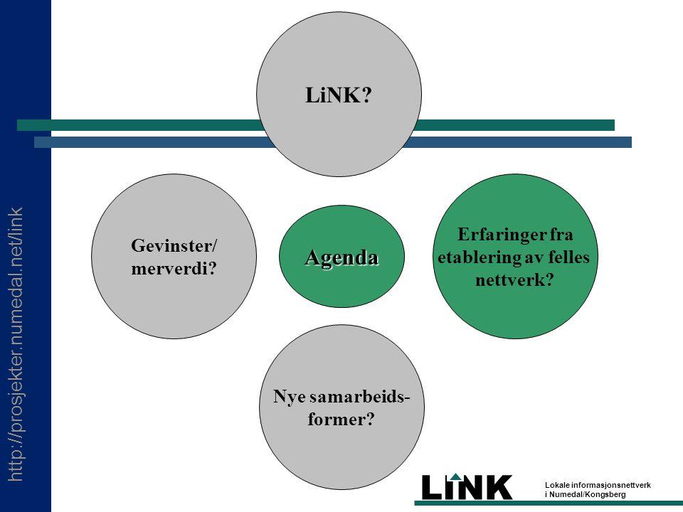 http://prosjekter.numedal.net/link LINK Lokale informasjonsnettverk i Numedal/Kongsberg Agenda LiNK.