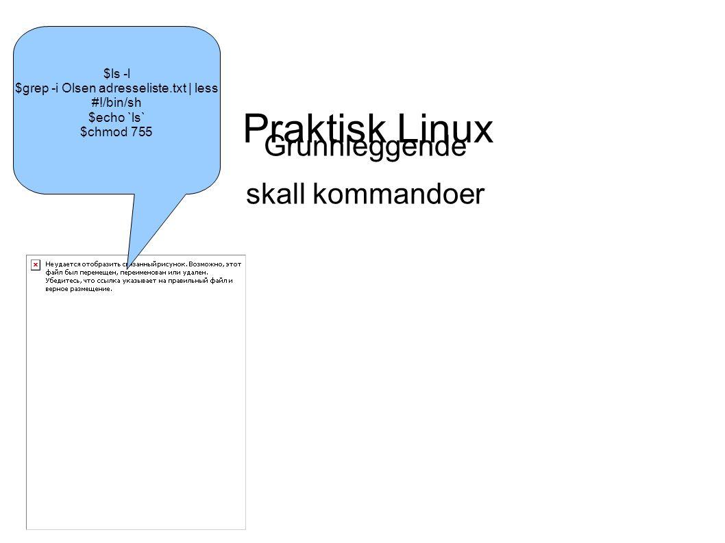 Praktisk Linux Grunnleggende skall kommandoer Irene Ludvigsen Husa $ls -l $grep -i Olsen adresseliste.txt | less #!/bin/sh $echo `ls` $chmod 755