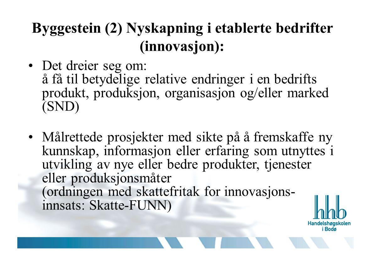Byggestein (2) Nyskapning i etablerte bedrifter (innovasjon): Det dreier seg om: å få til betydelige relative endringer i en bedrifts produkt, produksjon, organisasjon og/eller marked (SND) Målrettede prosjekter med sikte på å fremskaffe ny kunnskap, informasjon eller erfaring som utnyttes i utvikling av nye eller bedre produkter, tjenester eller produksjonsmåter (ordningen med skattefritak for innovasjons- innsats: Skatte-FUNN)