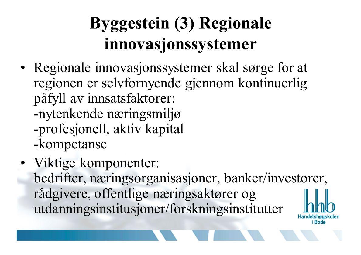 Byggestein (3) Regionale innovasjonssystemer Regionale innovasjonssystemer skal sørge for at regionen er selvfornyende gjennom kontinuerlig påfyll av innsatsfaktorer: -nytenkende næringsmiljø -profesjonell, aktiv kapital -kompetanse Viktige komponenter: bedrifter, næringsorganisasjoner, banker/investorer, rådgivere, offentlige næringsaktører og utdanningsinstitusjoner/forskningsinstitutter