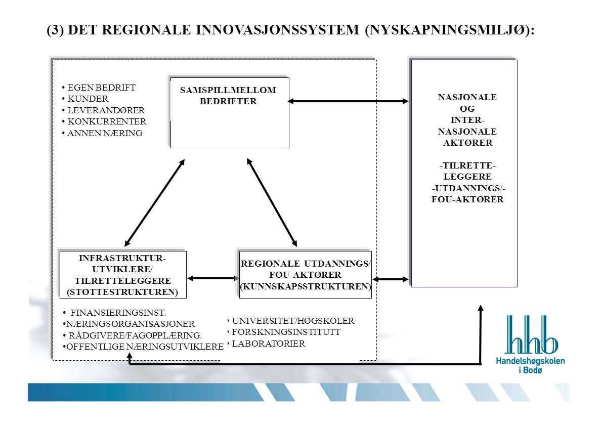INFRASTRUKTUR- UTVIKLERE/ TILRETTELEGGERE (STØTTESTRUKTUREN) SAMSPILL MELLOM BEDRIFTER (3) DET REGIONALE INNOVASJONSSYSTEM (NYSKAPNINGSMILJØ): EGEN BEDRIFT KUNDER LEVERANDØRER KONKURRENTER ANNEN NÆRING UNIVERSITET/HØGSKOLER FORSKNINGSINSTITUTT LABORATORIER FINANSIERINGSINST.