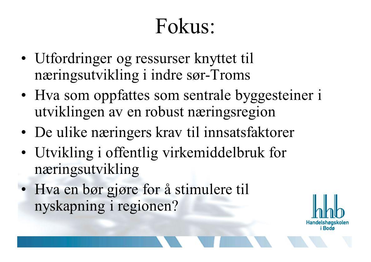 Fokus: Utfordringer og ressurser knyttet til næringsutvikling i indre sør-Troms Hva som oppfattes som sentrale byggesteiner i utviklingen av en robust næringsregion De ulike næringers krav til innsatsfaktorer Utvikling i offentlig virkemiddelbruk for næringsutvikling Hva en bør gjøre for å stimulere til nyskapning i regionen