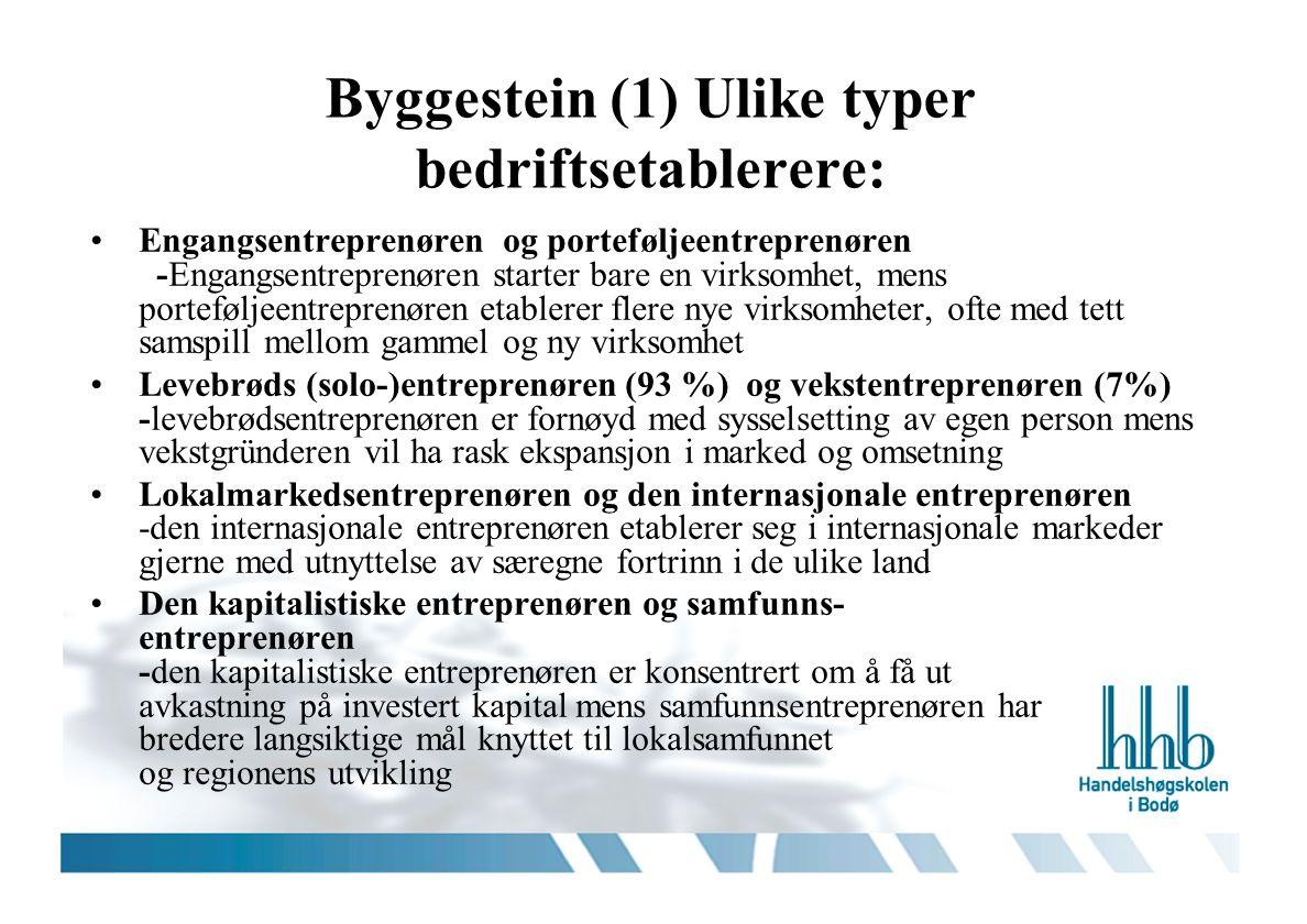 Byggestein (1) Ulike typer bedriftsetablerere: Engangsentreprenøren og porteføljeentreprenøren -Engangsentreprenøren starter bare en virksomhet, mens