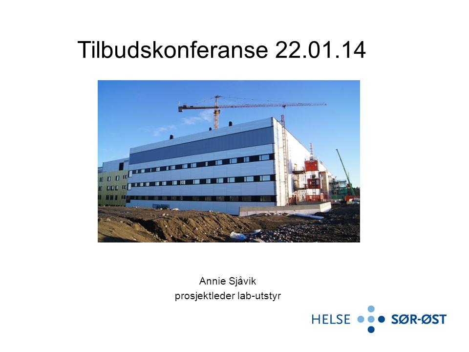 Annie Sjåvik prosjektleder lab-utstyr Tilbudskonferanse 22.01.14
