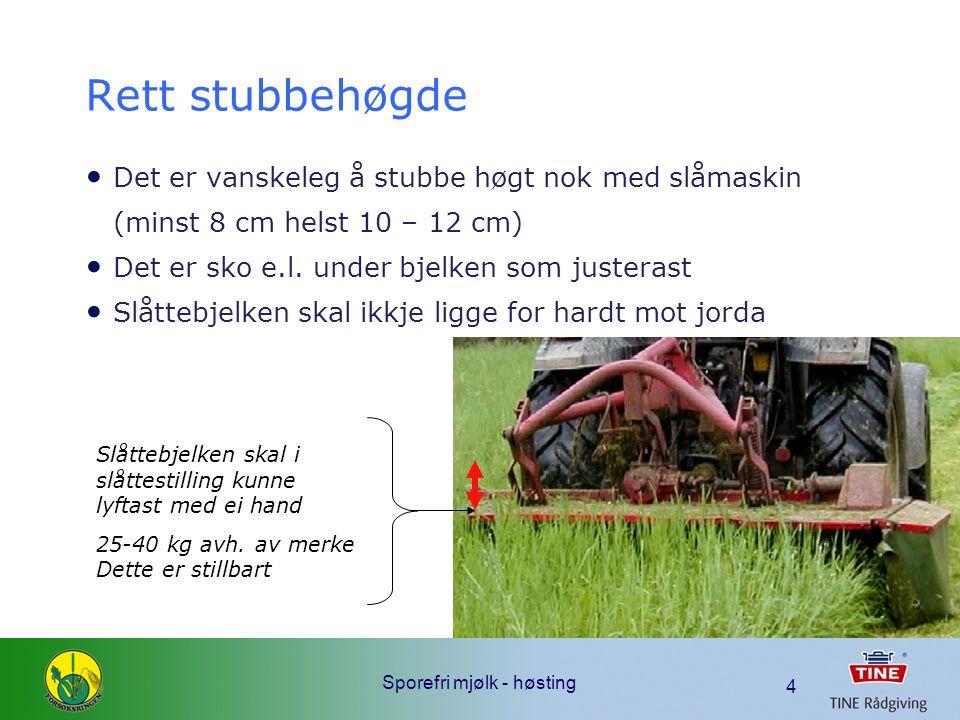 Sporefri mjølk - høsting 4 Rett stubbehøgde Det er vanskeleg å stubbe høgt nok med slåmaskin (minst 8 cm helst 10 – 12 cm) Det er sko e.l.