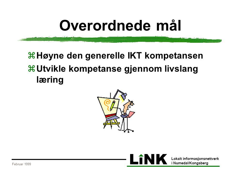 LiNK Lokalt informasjonsnettverk i Numedal/Kongsberg Februar 1999 Organisering  Arbeidsgruppe:  Aril Svinterud – Kongsberg vgs.