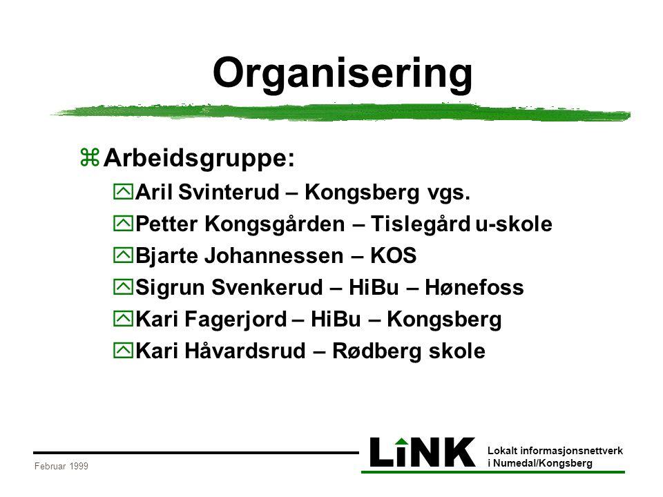 LiNK Lokalt informasjonsnettverk i Numedal/Kongsberg Februar 1999 Organisering 2  Delprosjektgruppe:  Unni Fjeldheim – Kongsberg  Asbjørn Brækhus – Flesberg  Kari Sylte – Rollag  Ole Jørn Solberg – Nore og Uvdal