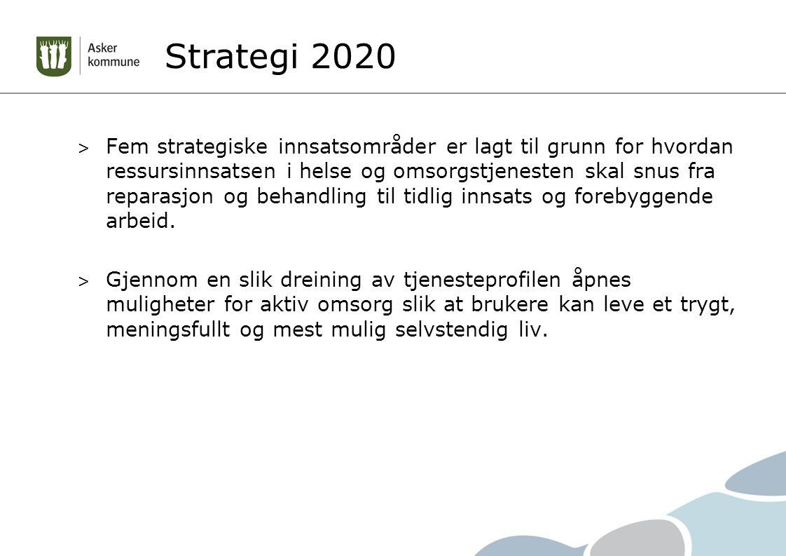 Strategi 2020 > Fem strategiske innsatsområder er lagt til grunn for hvordan ressursinnsatsen i helse og omsorgstjenesten skal snus fra reparasjon og behandling til tidlig innsats og forebyggende arbeid.
