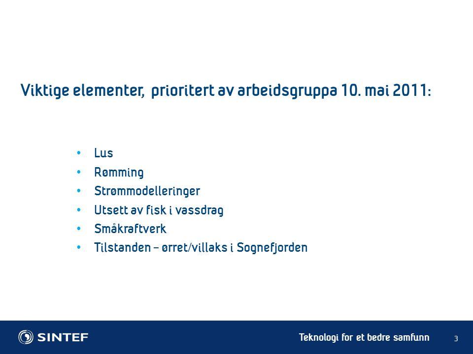 Teknologi for et bedre samfunn 14 Marine planteplankton i Sognefjorden: Små bestander om vinteren grunnet lysbegrensning.
