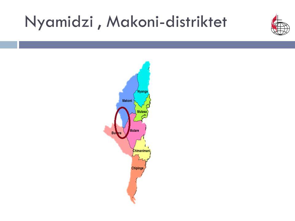 Nyamidzi, Makoni-distriktet