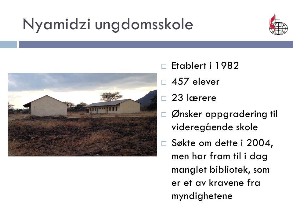 Nyamidzi ungdomsskole  Etablert i 1982  457 elever  23 lærere  Ønsker oppgradering til videregående skole  Søkte om dette i 2004, men har fram til i dag manglet bibliotek, som er et av kravene fra myndighetene