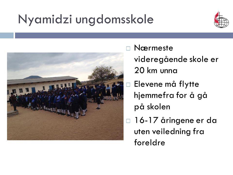 Nyamidzi ungdomsskole  Nærmeste videregående skole er 20 km unna  Elevene må flytte hjemmefra for å gå på skolen  16-17 åringene er da uten veiledning fra foreldre