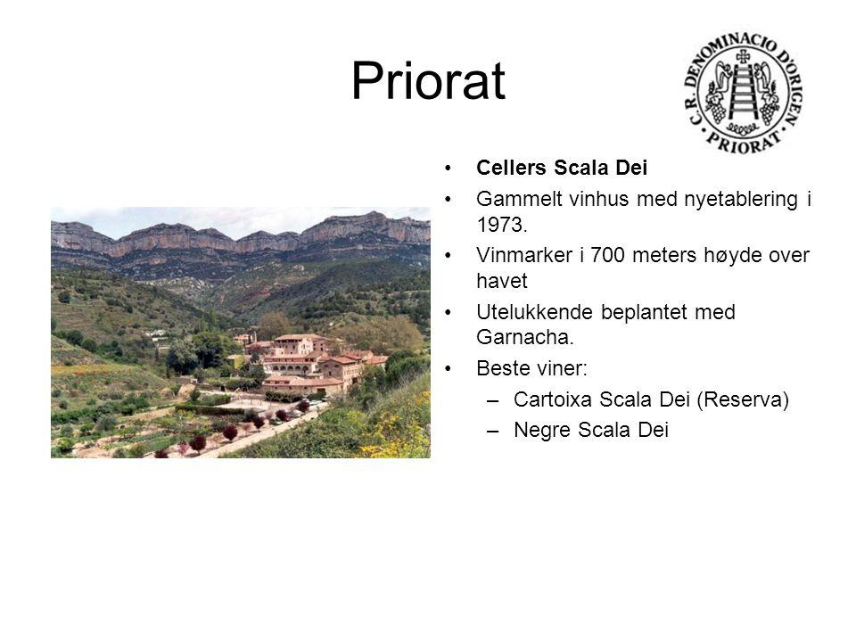 Priorat Cellers Scala Dei Gammelt vinhus med nyetablering i 1973. Vinmarker i 700 meters høyde over havet Utelukkende beplantet med Garnacha. Beste vi