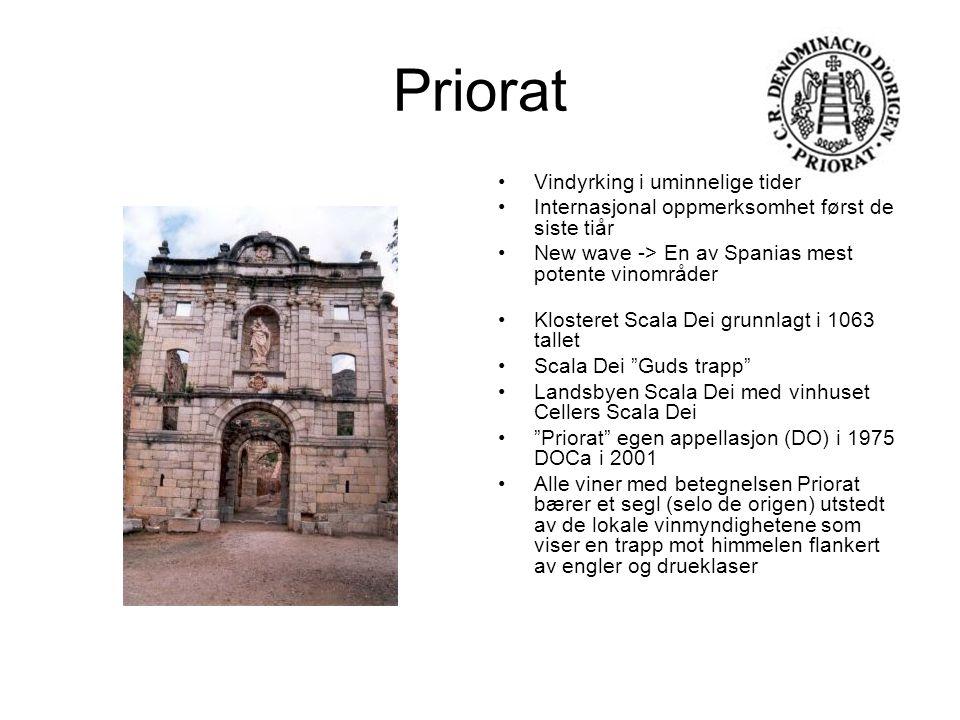 Priorat Garnacha Tinta er sammen med Cariñena de viktigste rødvinsdruene i Priorat.