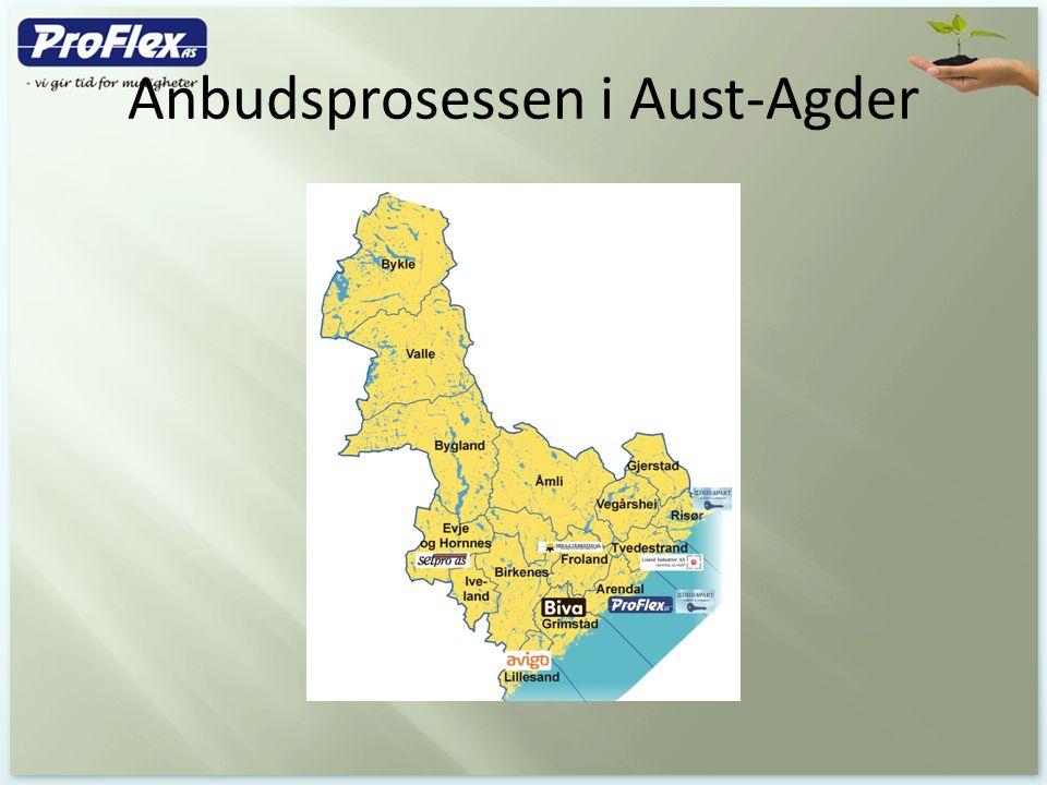 Anbudsprosessen i Aust-Agder