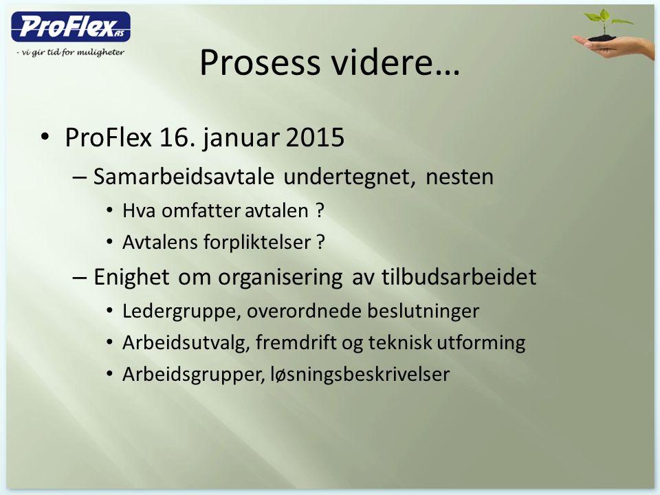 Prosess videre… ProFlex 16. januar 2015 – Samarbeidsavtale undertegnet, nesten Hva omfatter avtalen ? Avtalens forpliktelser ? – Enighet om organiseri