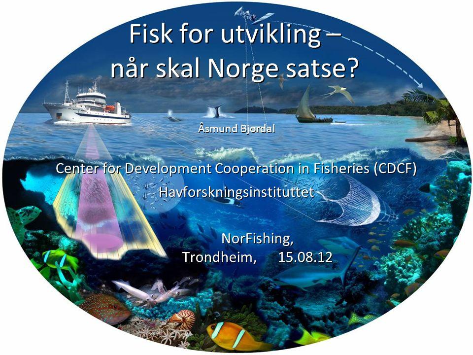 Fisk for utvikling – når skal Norge satse? Åsmund Bjordal Center for Development Cooperation in Fisheries (CDCF) Havforskningsinstituttet NorFishing,
