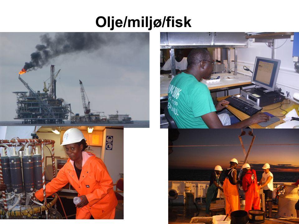 Olje/miljø/fisk