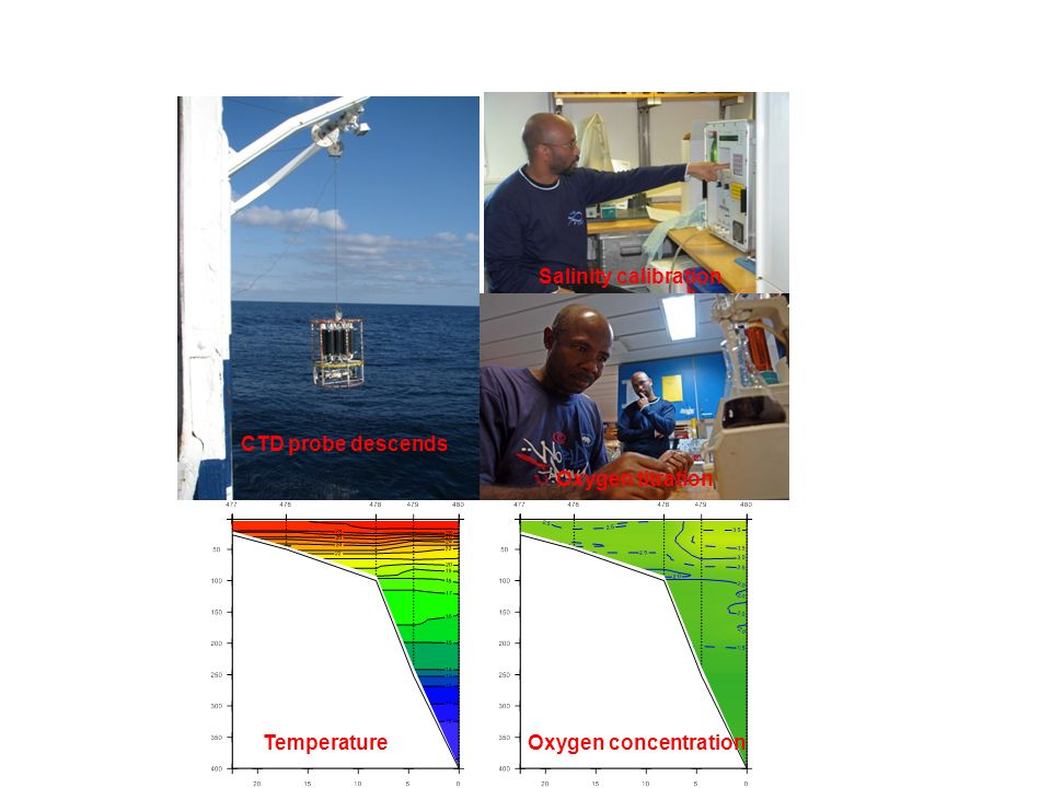 CTD probe descends Salinity calibration Oxygen titration TemperatureOxygen concentration Oceanographic investigations