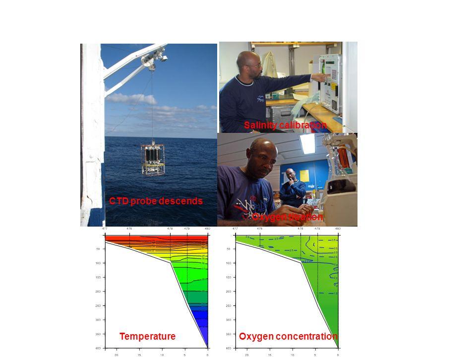 Plankton studies MultinetBongo netProcessing samples