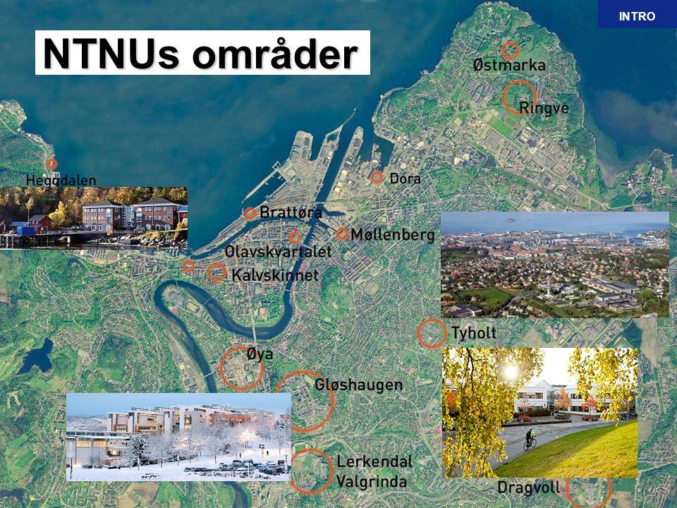 5 Mai 2013 DragvollDragvoll.Studenter 43 % Areal 14 % Tyholt.
