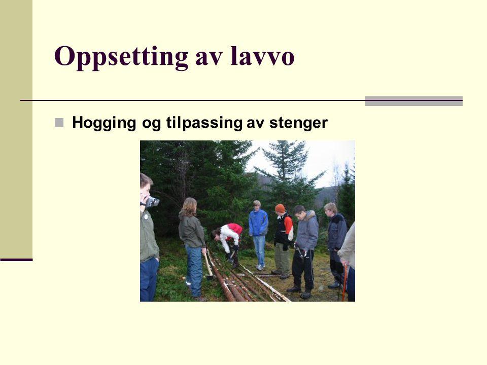 Oppsetting av lavvo Hogging og tilpassing av stenger