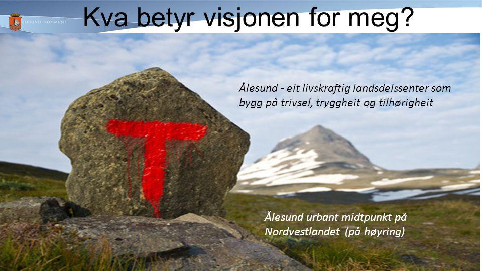 Kva betyr visjonen for meg.