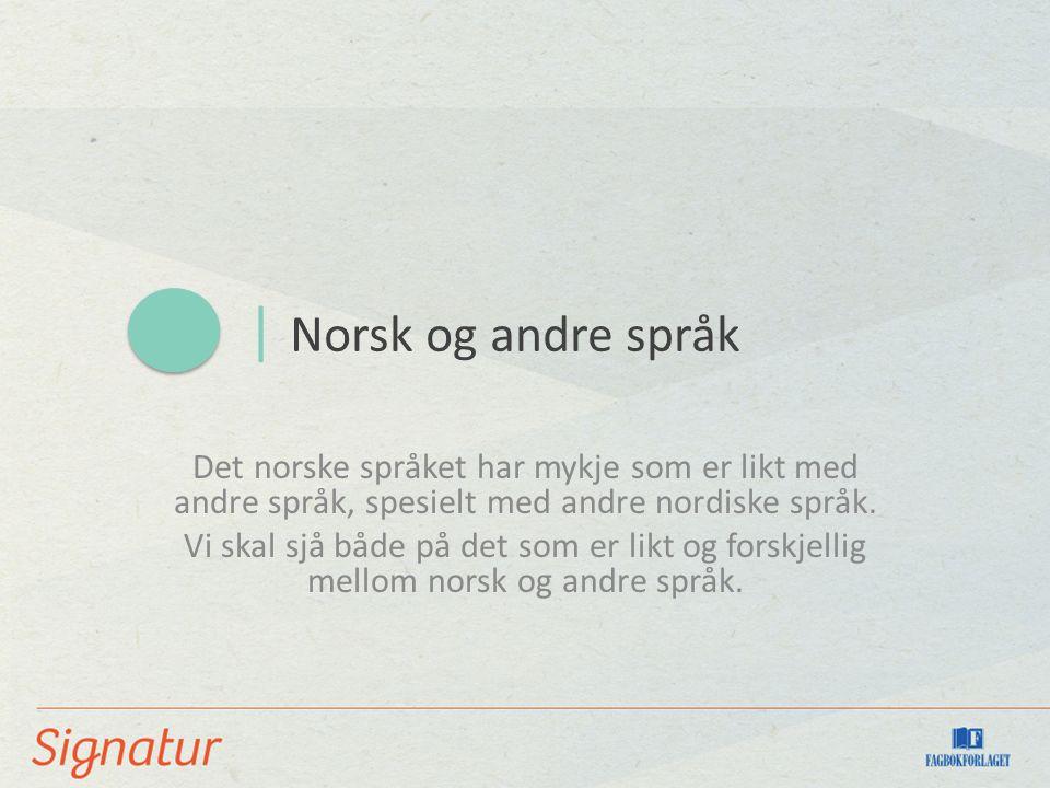 | Norsk og andre språk Det norske språket har mykje som er likt med andre språk, spesielt med andre nordiske språk.