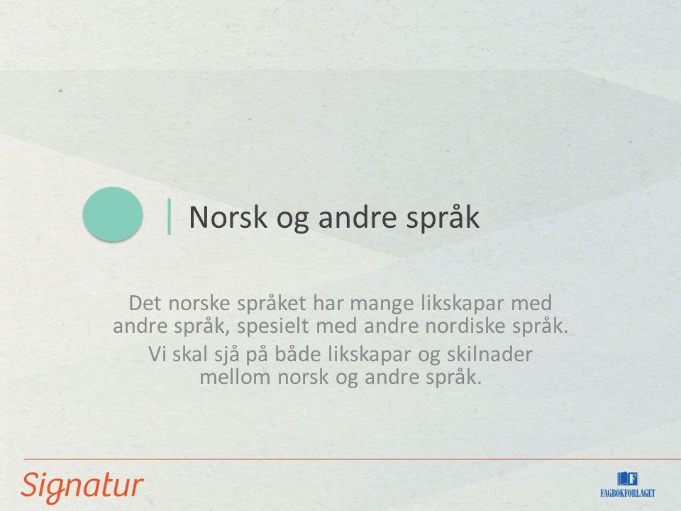 | Norsk og andre språk Det norske språket har mange likskapar med andre språk, spesielt med andre nordiske språk.
