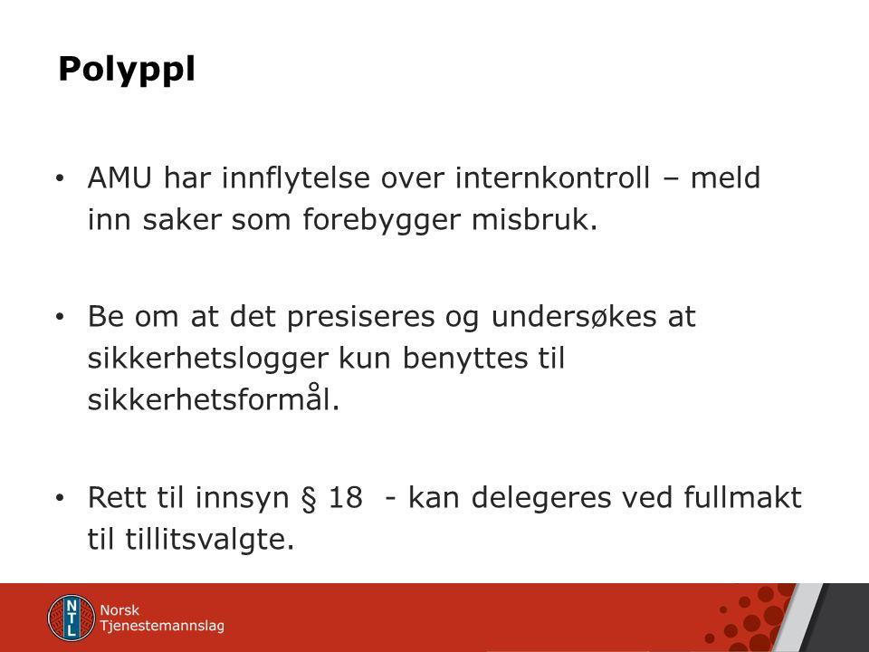 Polyppl AMU har innflytelse over internkontroll – meld inn saker som forebygger misbruk.