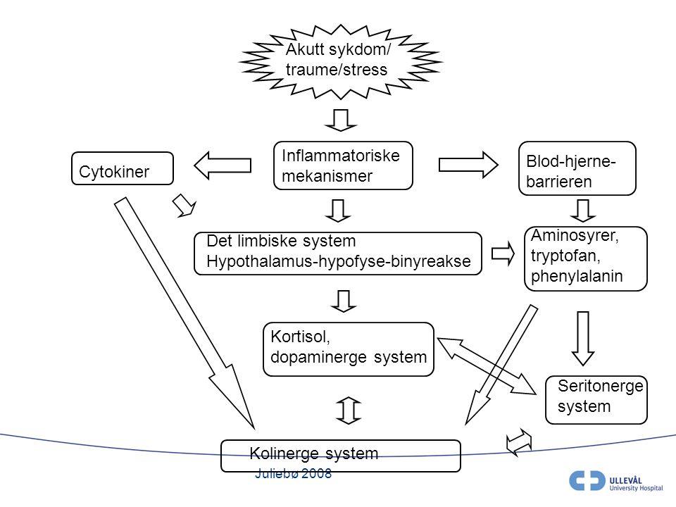 Juliebø 2008 Akutt sykdom/ traume/stress Inflammatoriske mekanismer Cytokiner Det limbiske system Hypothalamus-hypofyse-binyreakse Kortisol, dopaminerge system Kolinerge system Blod-hjerne- barrieren Aminosyrer, tryptofan, phenylalanin Seritonerge system