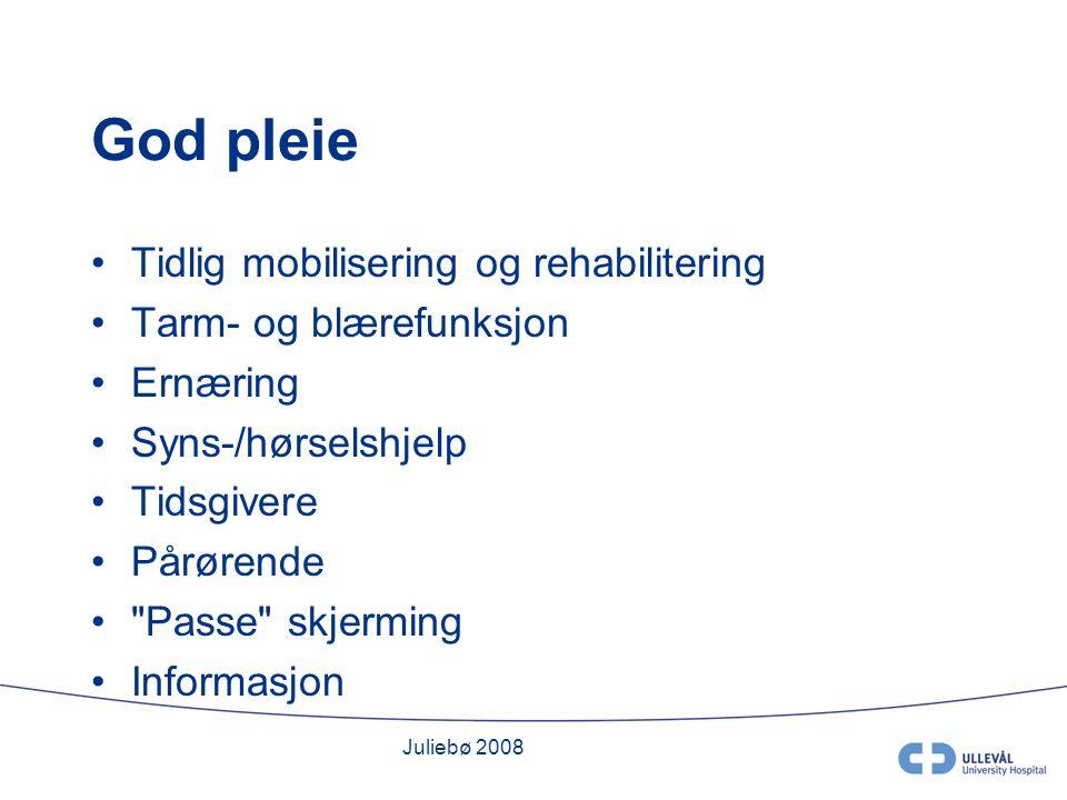 Juliebø 2008 God pleie Tidlig mobilisering og rehabilitering Tarm- og blærefunksjon Ernæring Syns-/hørselshjelp Tidsgivere Pårørende Passe skjerming Informasjon
