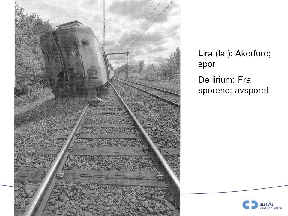 V.Juliebø May 2008 Lira (lat): Åkerfure; spor De lirium: Fra sporene; avsporet