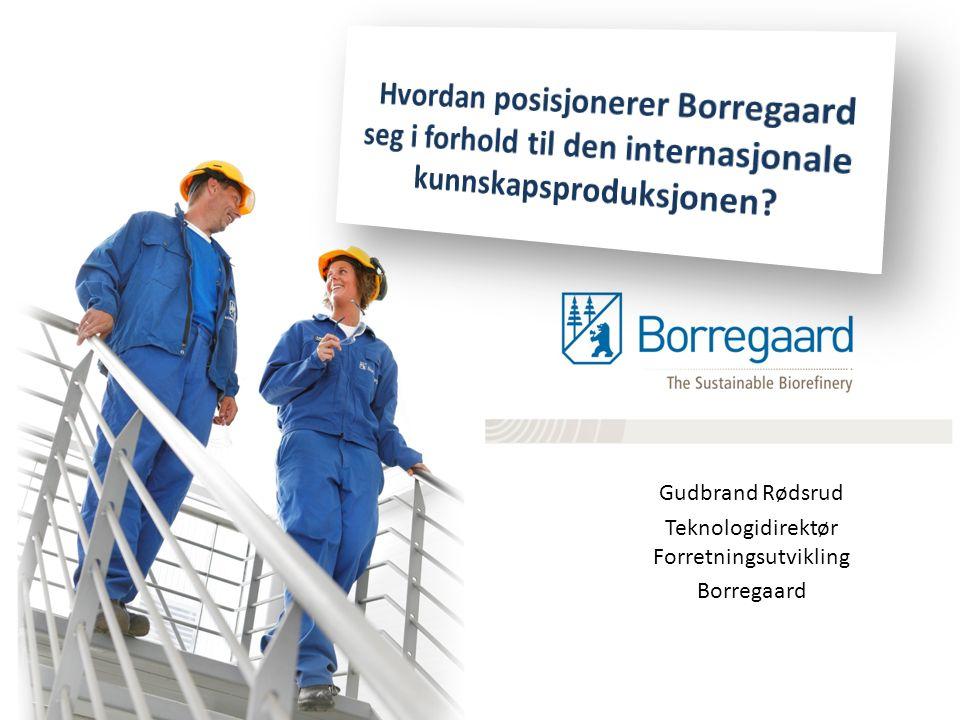 Gudbrand Rødsrud Teknologidirektør Forretningsutvikling Borregaard