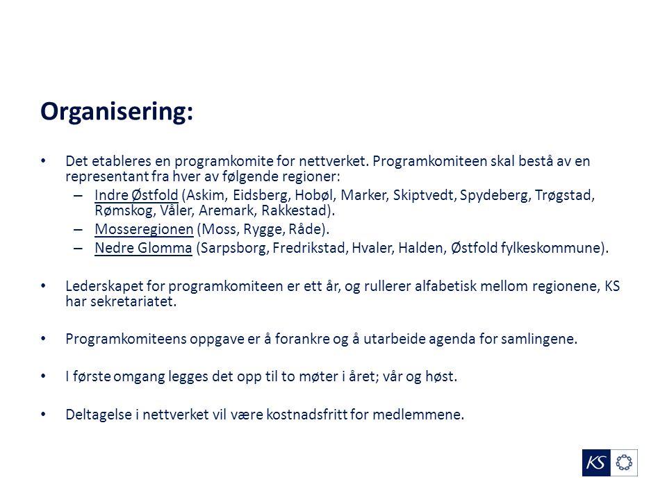 Organisering: Det etableres en programkomite for nettverket.