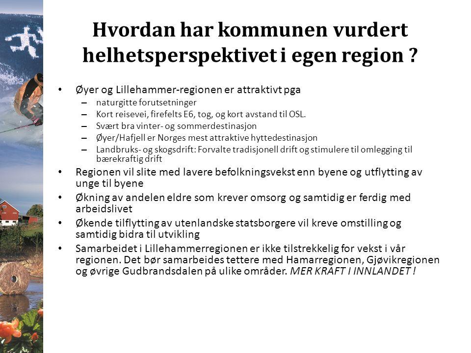Hvordan har kommunen vurdert helhetsperspektivet i egen region .