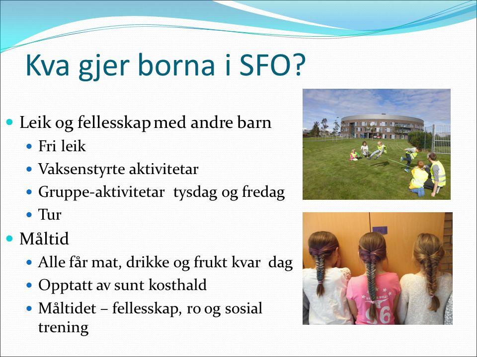 Kva gjer borna i SFO.