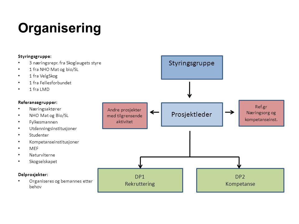 Organisering Styringsgruppe: 3 næringsrepr. fra Skoglaugets styre 1 fra NHO Mat og bio/SL 1 fra VelgSkog 1 fra Fellesforbundet 1 fra LMD Referansegrup