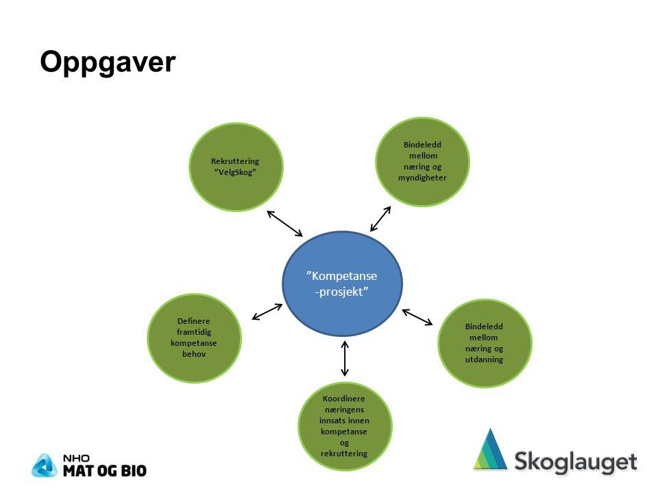 Oppgaver Kompetanse -prosjekt Rekruttering VelgSkog Definere framtidig kompetanse behov Bindeledd mellom næring og myndigheter Bindeledd mellom næring og utdanning Koordinere næringens innsats innen kompetanse og rekruttering