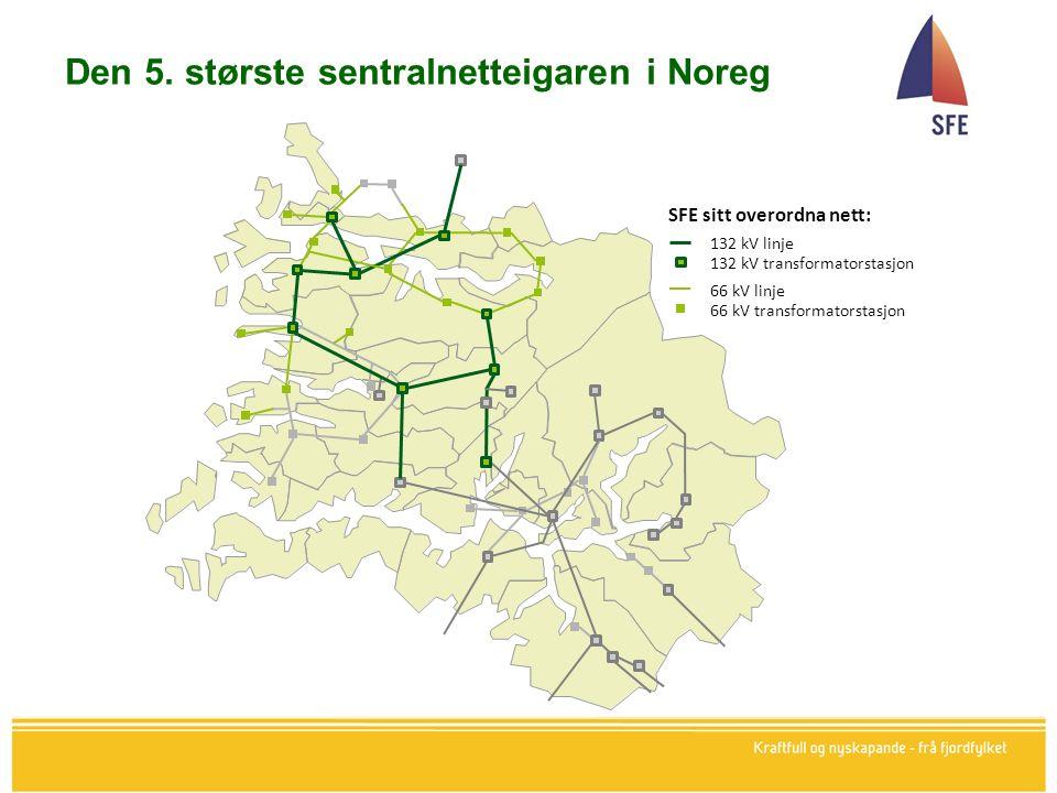 Den 5. største sentralnetteigaren i Noreg
