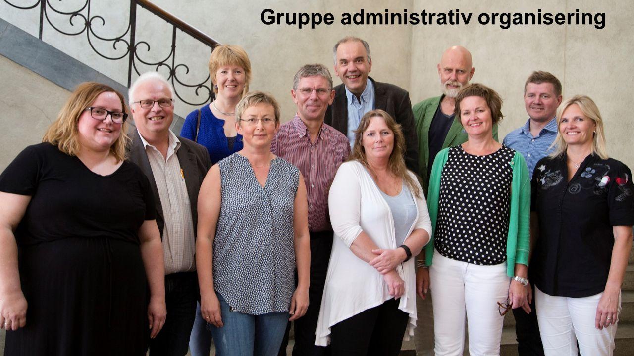 Gruppe administrativ organisering
