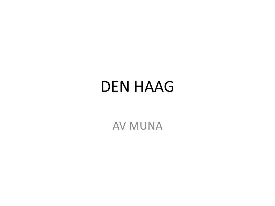 DEN HAAG er den tredje største byen i Nederland, etter Amsterdam og Rotterdam.