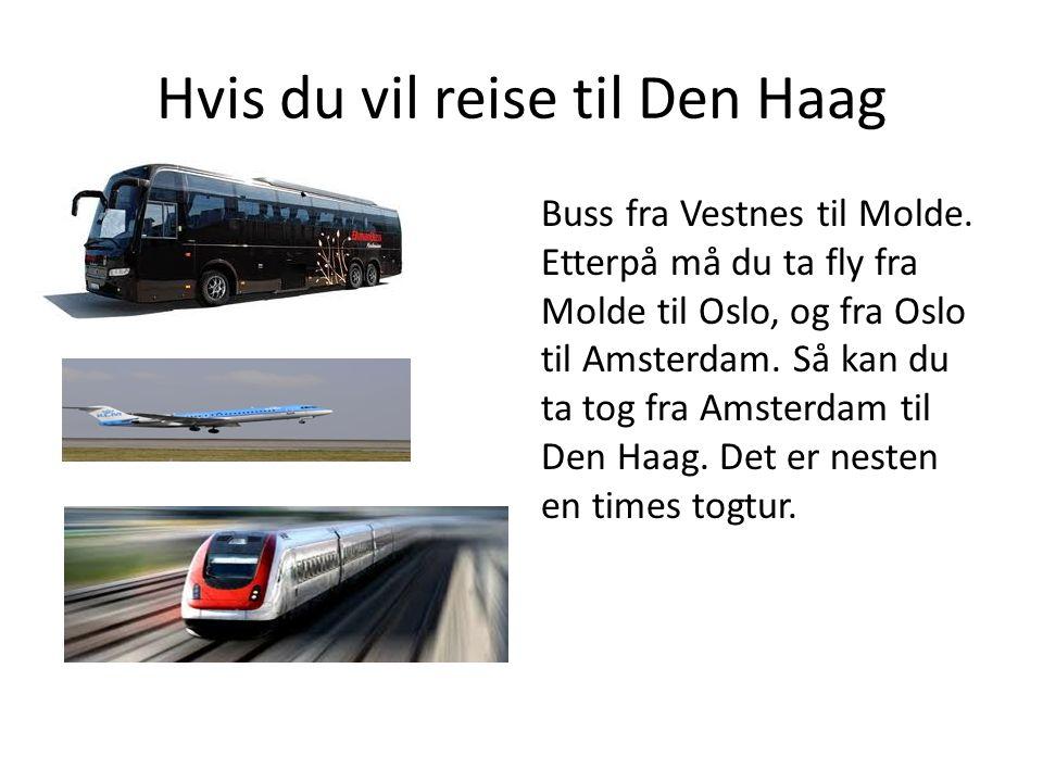Hvis du vil reise til Den Haag Buss fra Vestnes til Molde. Etterpå må du ta fly fra Molde til Oslo, og fra Oslo til Amsterdam. Så kan du ta tog fra Am