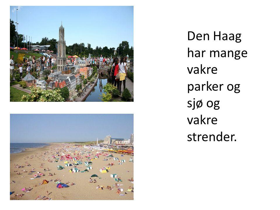 Den Haag har mange vakre parker og sjø og vakre strender.
