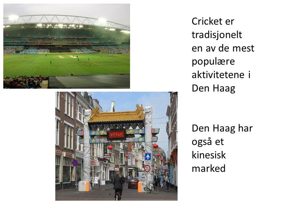Cricket er tradisjonelt en av de mest populære aktivitetene i Den Haag Den Haag har også et kinesisk marked