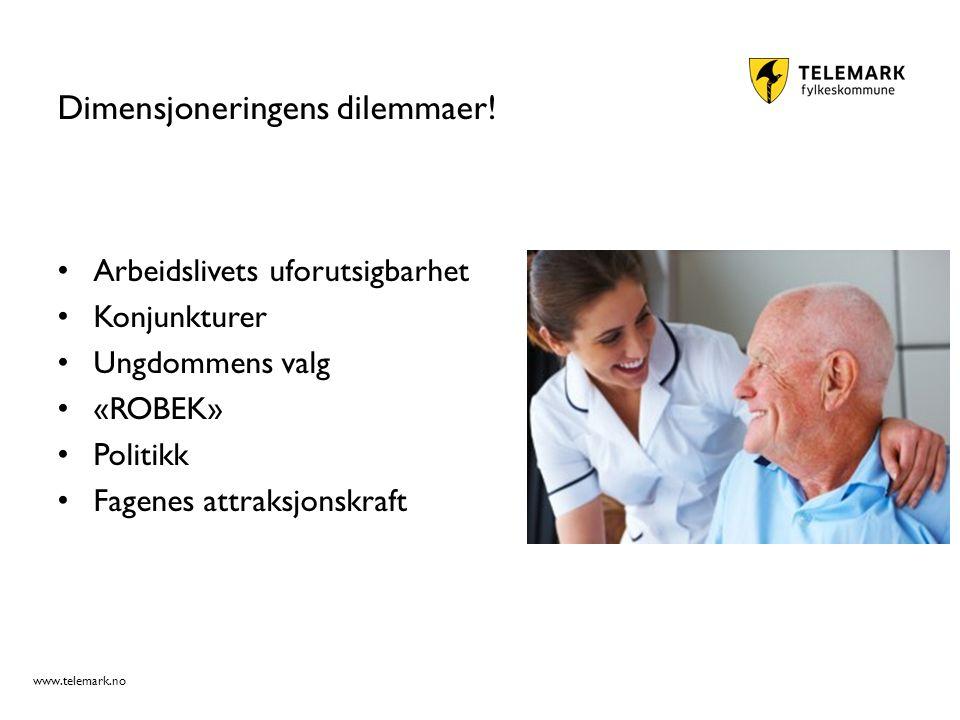 www.telemark.no Dimensjoneringens dilemmaer.