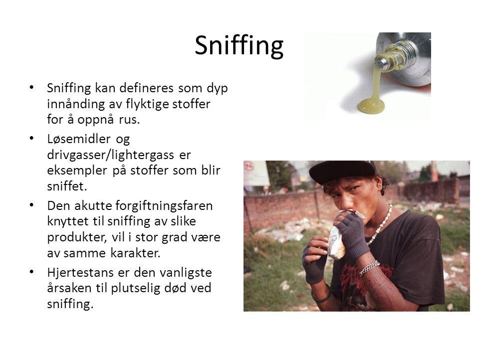 Sniffing Sniffing kan defineres som dyp innånding av flyktige stoffer for å oppnå rus.