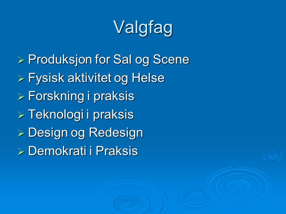 Valgfag  Produksjon for Sal og Scene  Fysisk aktivitet og Helse  Forskning i praksis  Teknologi i praksis  Design og Redesign  Demokrati i Praksis