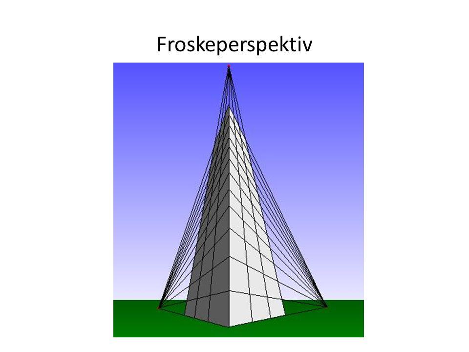 Froskeperspektiv